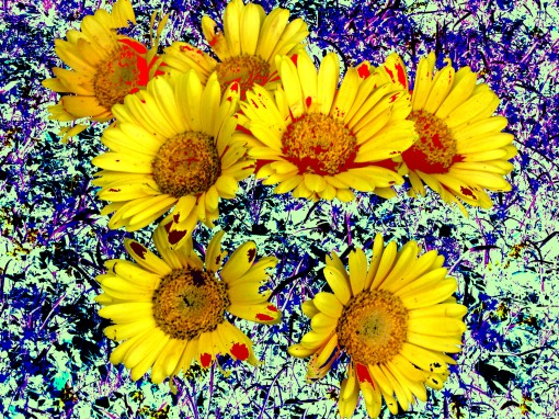 Psychedelic-flowers-2